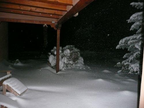 Snow_20101216